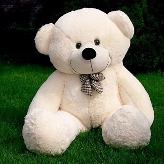 生日送礼; 爱相随 绒玩具 泰迪熊 大号 抱抱熊 公仔 生日礼 布娃娃 1.